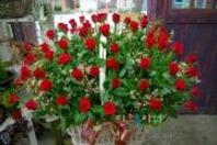사랑해요 100송이 꽃바구니